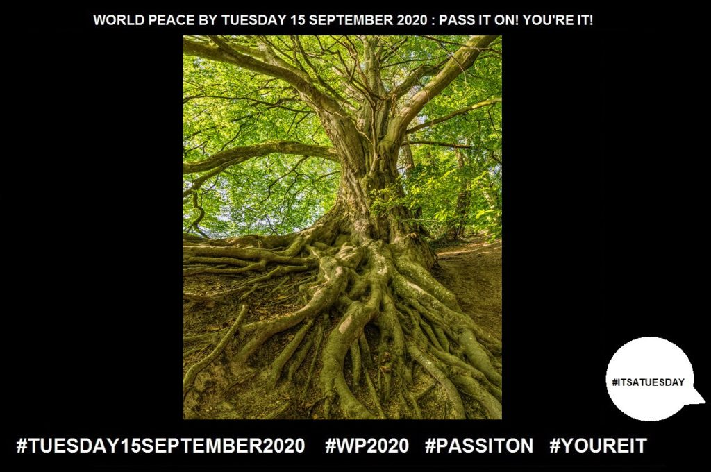 Growth-Process of Increasing in Size-46 of 65-WORLD PEACE ON Tuesday 15 September 2020