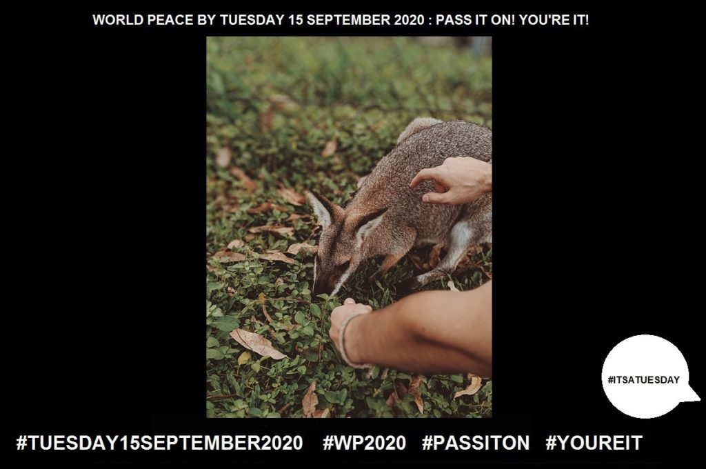 Kindness-Quality of Being Friendly, Generous, and Considerate-65 of 65-WORLD PEACE ON Tuesday 15 September 2020