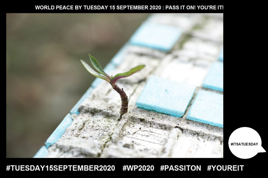 Life-The Period Between Birth and Death-61 of 65-WORLD PEACE ON Tuesday 15 September 2020